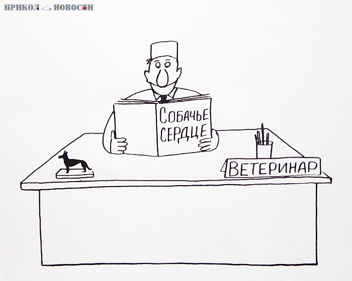 Весёлые карикатуры Александра Петрова. Ветеринар.