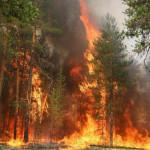 Пожары в Хакассии. От поджога травы и шквалистого ветра горят целые поселки