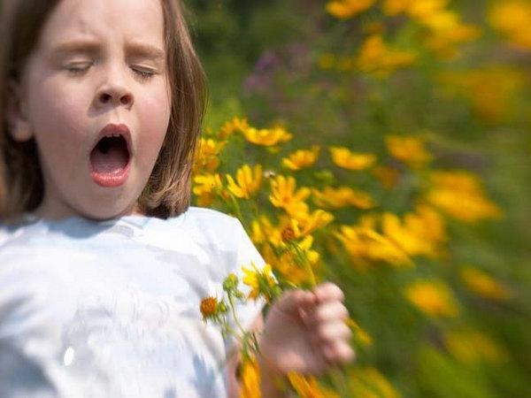 allergiya-pollinoz-vesnoj-kak-lechit-i-chto-delat-v-pervuyu-ochered