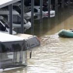 В Тбилиси наводнение — хищные звери сбежали из зоопарка СМОТРЕТЬ ВИДЕО