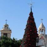 В Вифлееме зажглась рождественская елка ФОТО ВИДЕО
