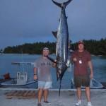 Рыбак в Австралии едва не погиб от меч-рыбы ФОТО