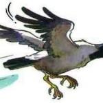 Нахальная ворона-воровка украла ложку из офиса ВИДЕО