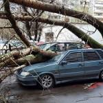 Ураган в Москве унес одну жертву и покалечил десятки человек ВИДЕО